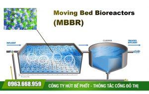 Xử lý nước thải bằng vi sinh vật