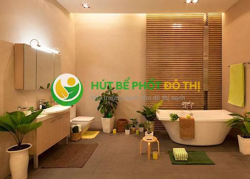Tác dụng của việc trồng cây trong nhà vệ sinh