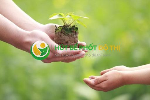 Tích cực trồng cây xanh